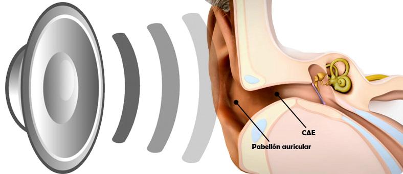 vibración en los oidos